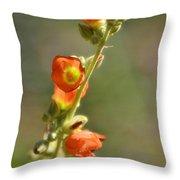 Scarlet Globe-mallow Throw Pillow