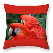 Scarlet Macaws Throw Pillow