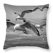 Sea Gull Scavengers Throw Pillow
