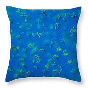 Scenedesmus Sp. Algae, Lm Throw Pillow