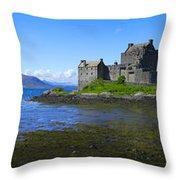 Scenic Castle Throw Pillow