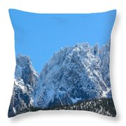 Scenic Splendor   Throw Pillow