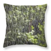 Scenic View In Zion National Park Throw Pillow