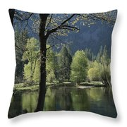 Scenic View Of The Merced River Throw Pillow