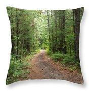 Scenic Walk Throw Pillow