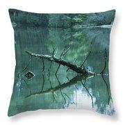 Scenic Woodland Lake Throw Pillow