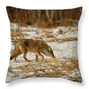 Scent Of A Doe Throw Pillow