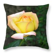 Scent Of A Rosebud Throw Pillow
