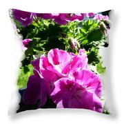 Scented Geraniums Throw Pillow