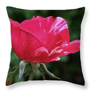 Scentimental Pink Throw Pillow