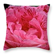 Scentimental Throw Pillow