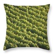 Schlosswein Throw Pillow