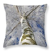 Snowworld Fineart  Throw Pillow