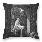 Schoenbrunn Palace, 1823 Throw Pillow