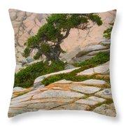 Schoodic Cliffs Throw Pillow