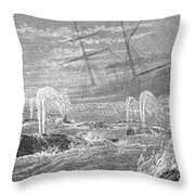 School Of Whales, 1876 Throw Pillow