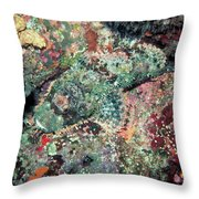 Scorpionfish Throw Pillow