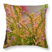 Scotch Heather Throw Pillow