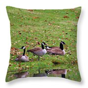 Scott Lake Visitation Throw Pillow