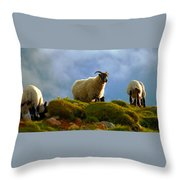 Scottish Blackface Throw Pillow