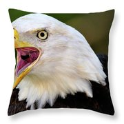 Screaming Eagle II Large Throw Pillow