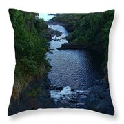 Scripture And Picture Psalm 24 2 Throw Pillow