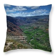 Scriture And Picture Isaiah 41 18 Throw Pillow