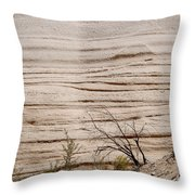 Sculpted By Nature Throw Pillow