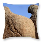 Sculpted Rock Throw Pillow