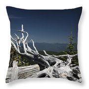 Sculpture By Mother Nature Throw Pillow