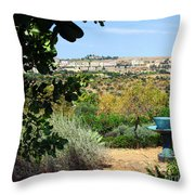 Sculpture Garden In Sicily 2 Throw Pillow