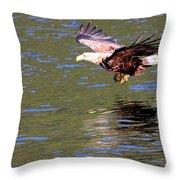 Sea Eagle's Water Landing Throw Pillow
