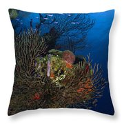 Sea Fan Seascape, Belize Throw Pillow
