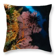 Sea Fans And Crinoid, Fiji Throw Pillow