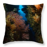 Sea Fans, Fiji Throw Pillow