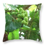 Sea Grape Sgwc Throw Pillow