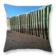 Sea Green Pier Throw Pillow