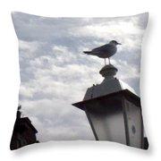 Sea Gull Throw Pillow
