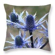 Sea Holly Throw Pillow