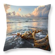 Sea Jewel Throw Pillow