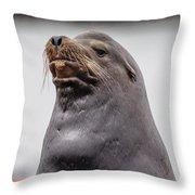Sea Lion Satisfaction Throw Pillow