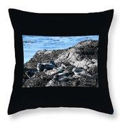 Sea Lions In Alaska Throw Pillow