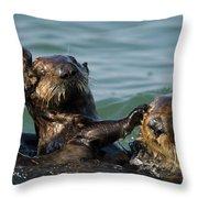 Sea Otter Enhydra Lutris Bachelor Male Throw Pillow