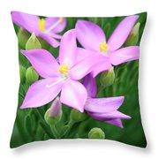 Sea Rose Flower Throw Pillow