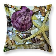 Sea Treasure - Landscape Throw Pillow