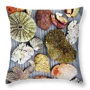 Sea Treasures Throw Pillow