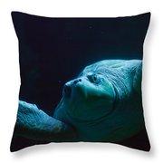 Sea Turtle In Deep Ocean Throw Pillow