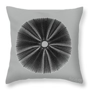 Sea Urchin 1 Throw Pillow
