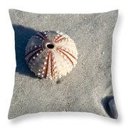 Sea Urchin And Shell Throw Pillow