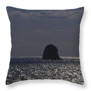 Sea Watchers Throw Pillow